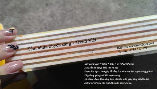 Mặt cắt tấm nhựa xuyên sáng Trend Việt